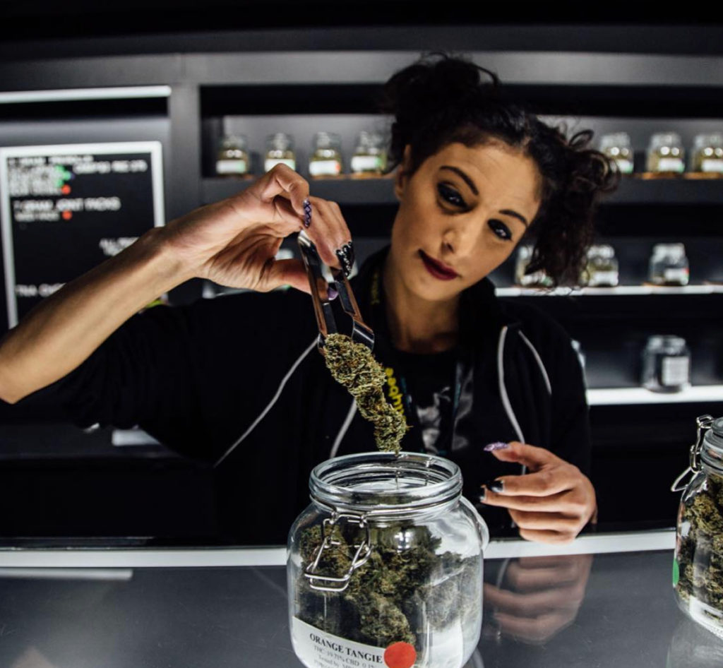 The New Amsterdam Budtender
