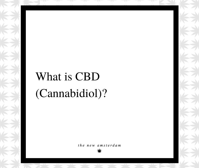11 - What is CDB - The New Amsterdam