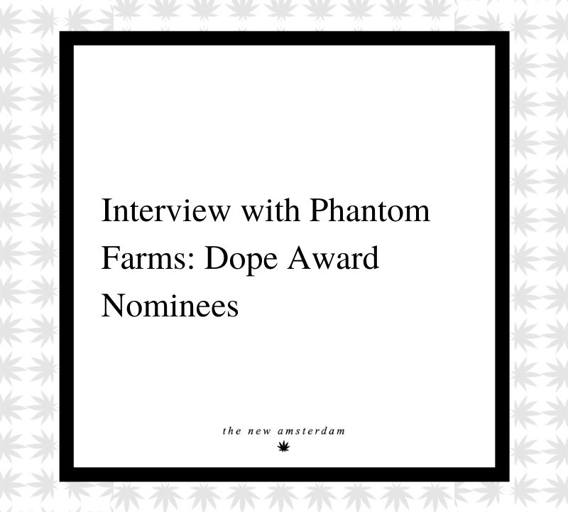 6 - Interview with Phantom Farms - Dope award nominees - The New Amsterdam