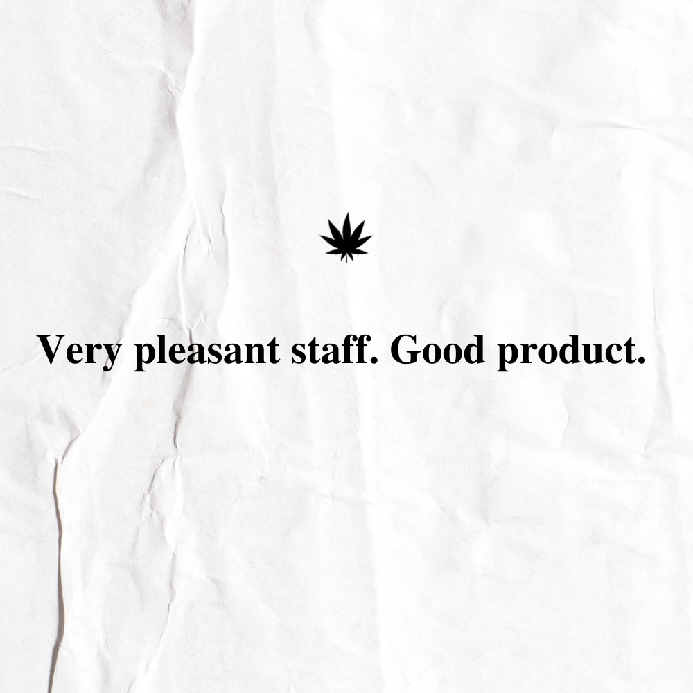 The New Amsterdam Customer Review 1