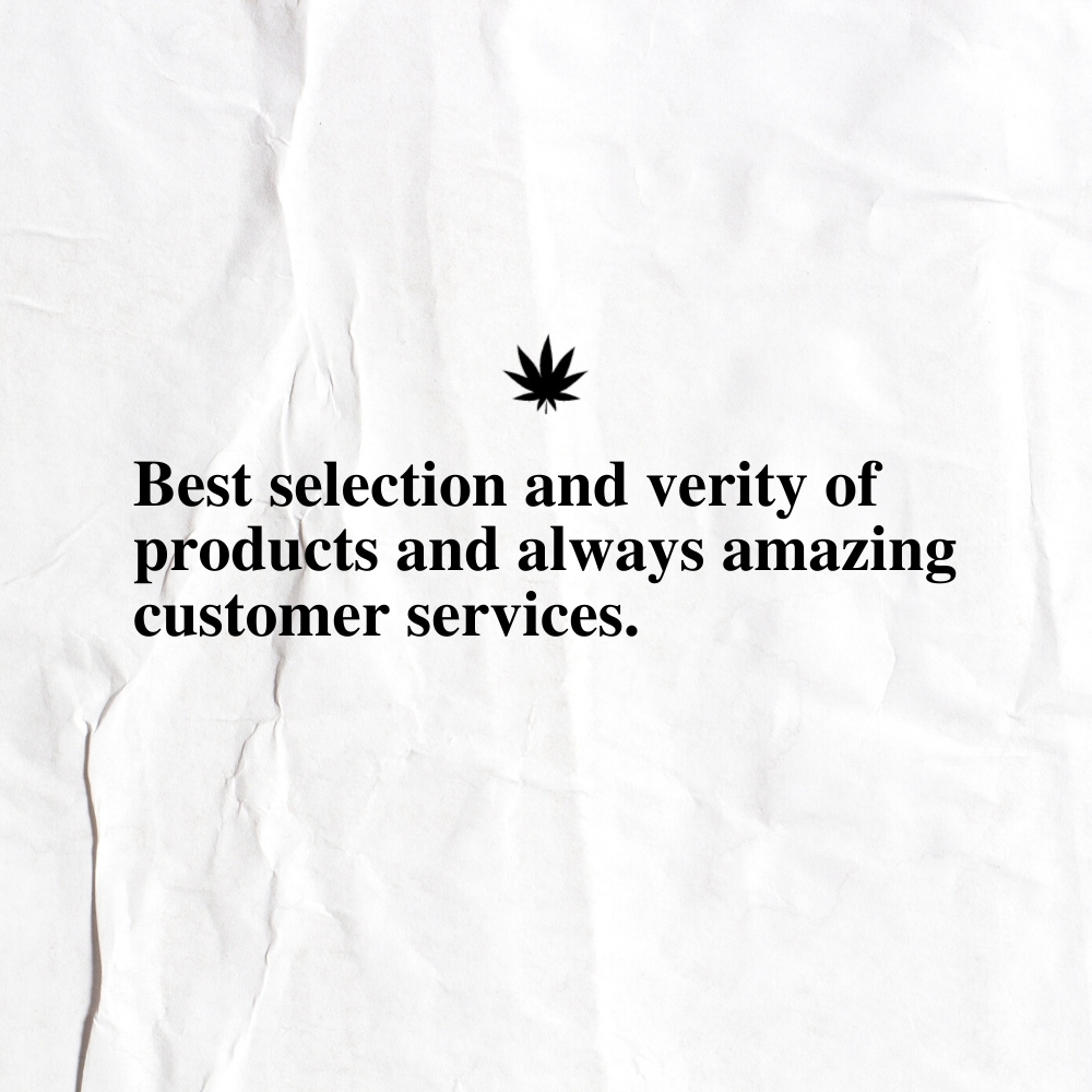 The New Amsterdam Customer Review 10