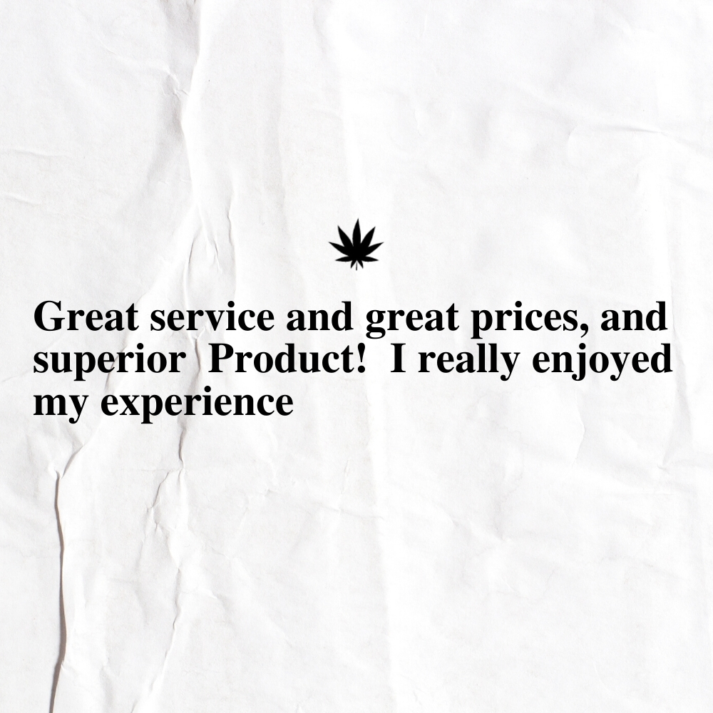 The New Amsterdam Customer Review 26