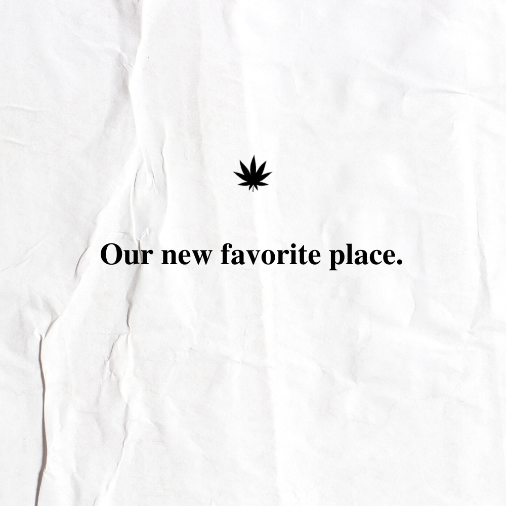 The New Amsterdam Customer Review 35