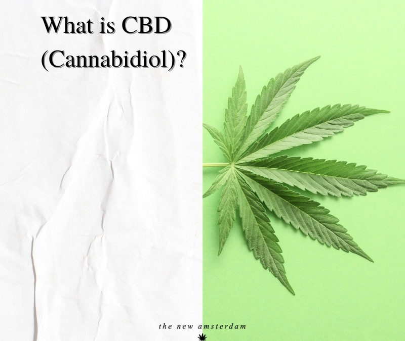 What is CDB - The New Amsterdam