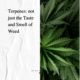 Terpenes - not just the taste and smell of weed - The New Amsterdam