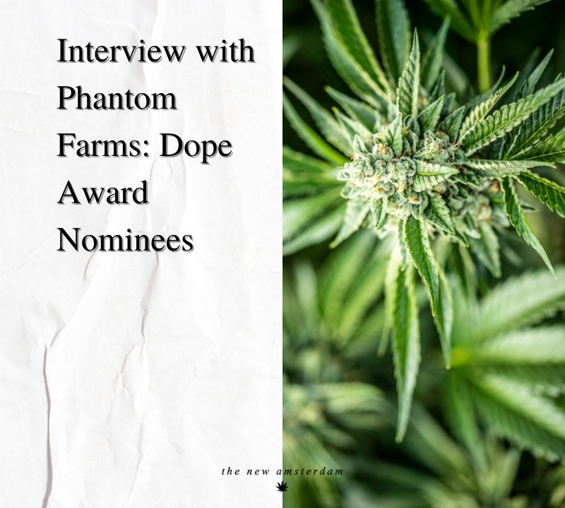 Interview with Phantom Farms - Dope award nominees - The New Amsterdam